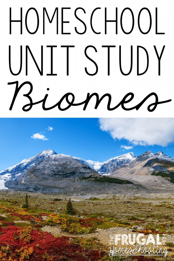 Types of Biomes: Free and Frugal Homeschool Unit Study