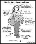 How to Identify a Homeschool Mom Home Spun Juggling Comics