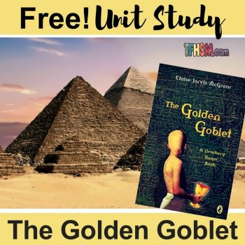 free homeschool unit study resources printables lesson plan for The Golden Goblet s