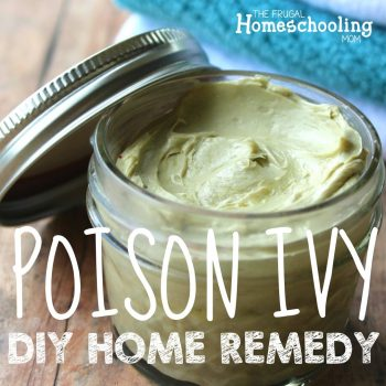 Homemade Poison Ivy Remedy with Colloidal Silver Bentonite Clay Essential Oils Apple Cider Vinegar Aloe Vera